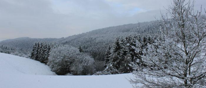 Bild: Winterimpression